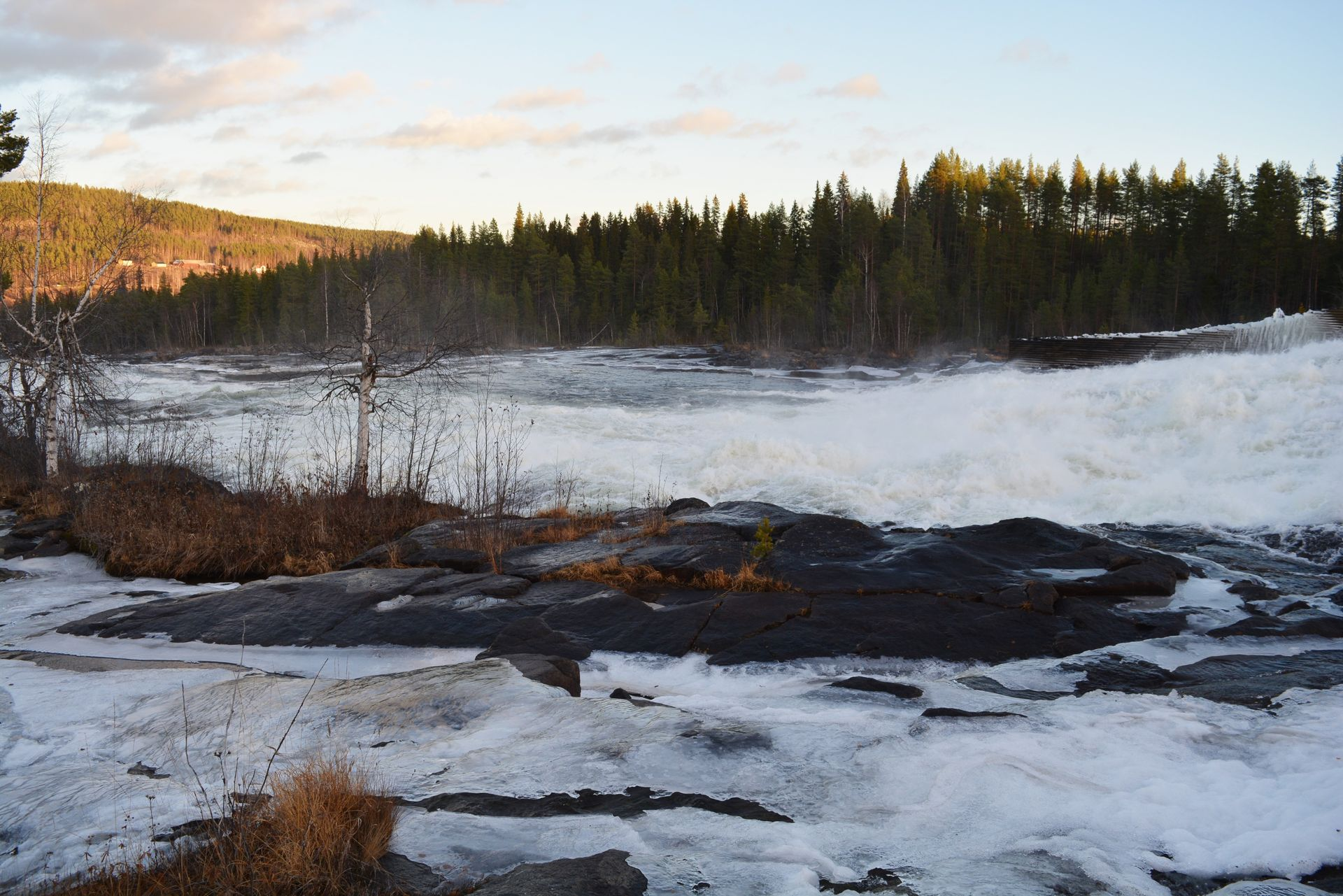Visit Storforsen, the amazing waterfall.