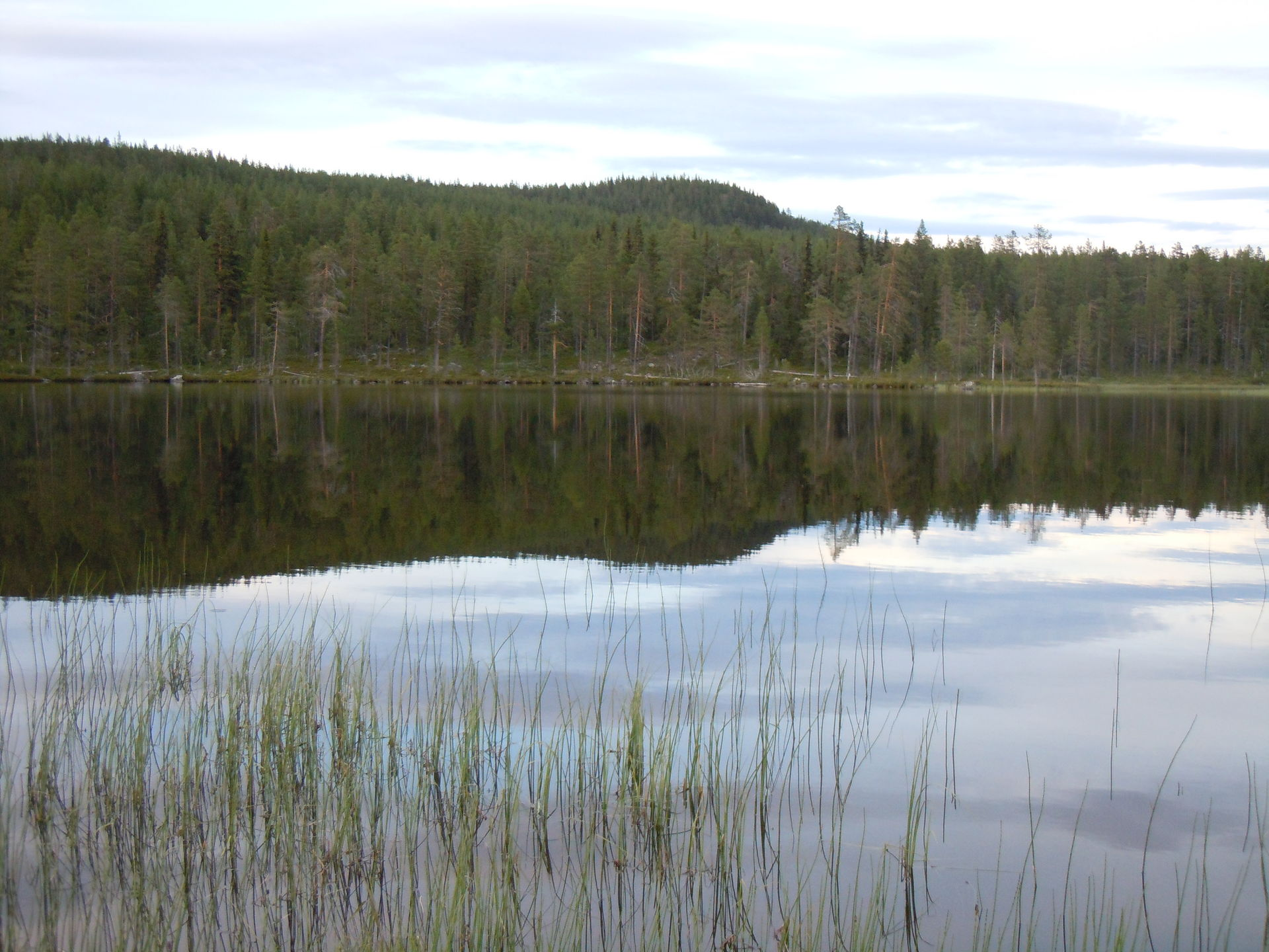 Fly fishing for actic char and trout in Lapland