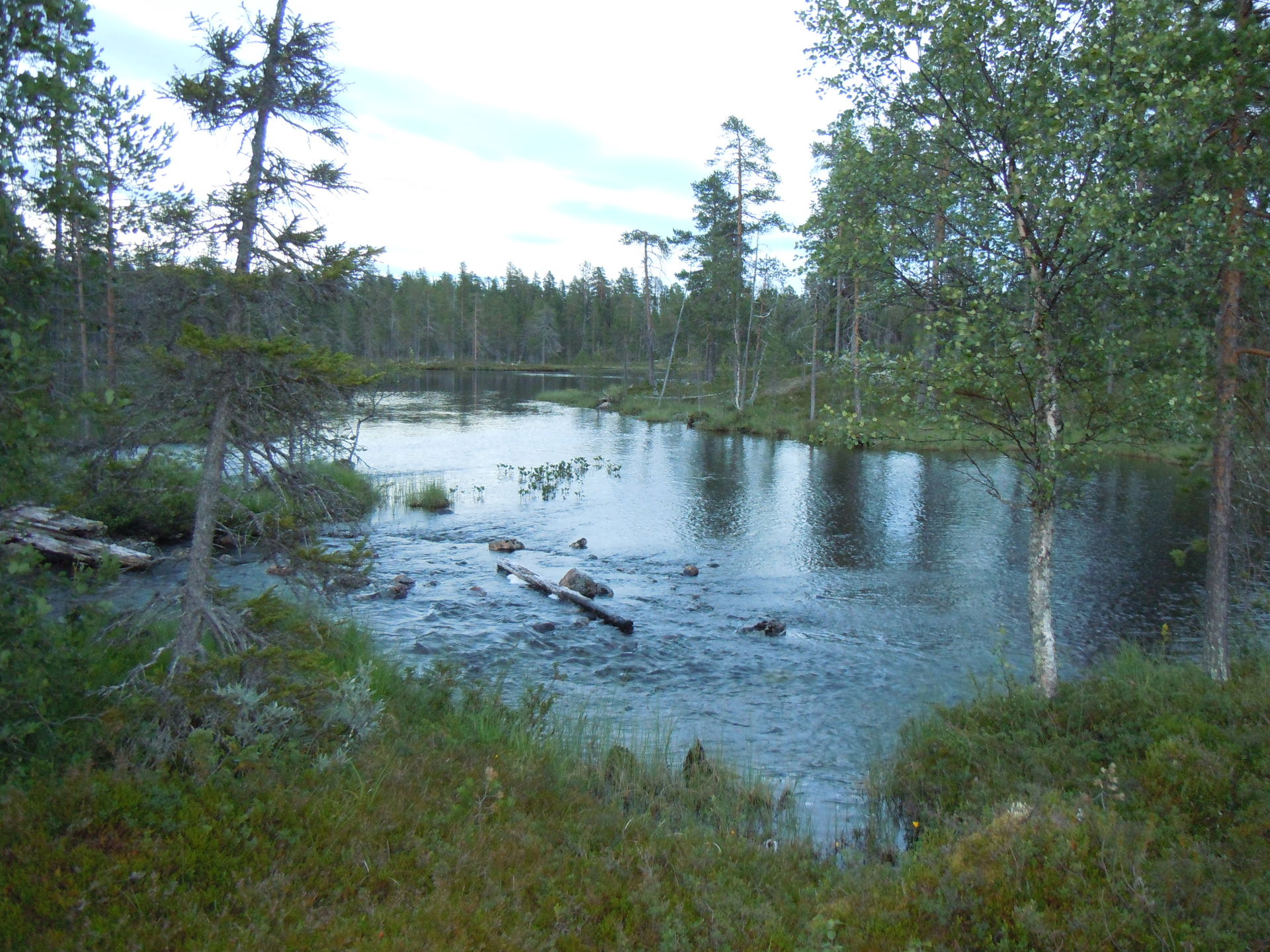 True wilderness fishing in Lapland