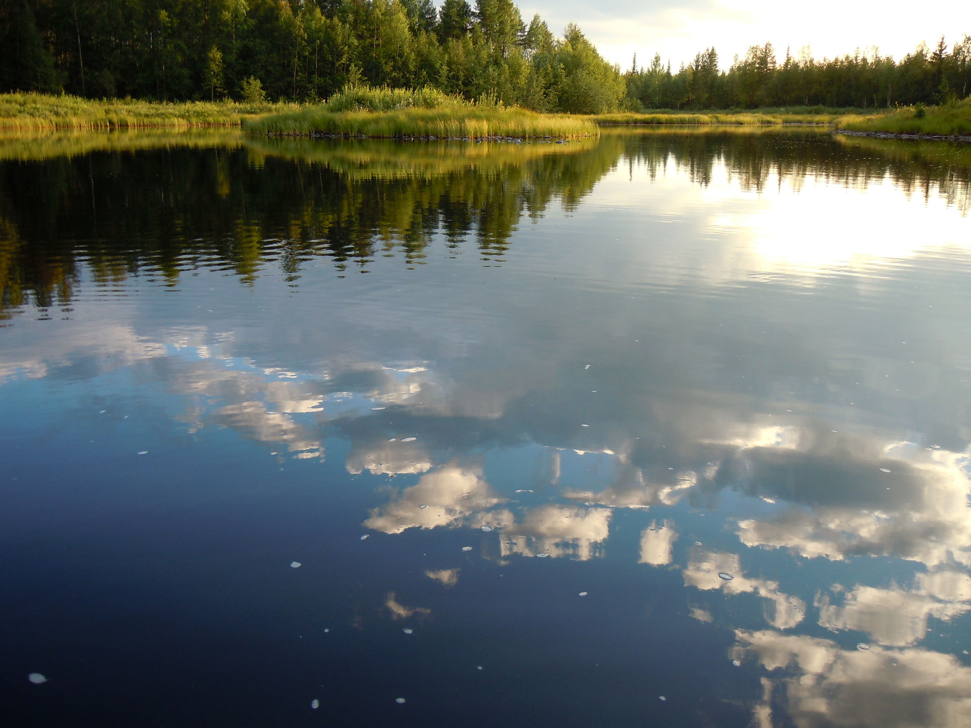 Nice fishing waters in Lapland