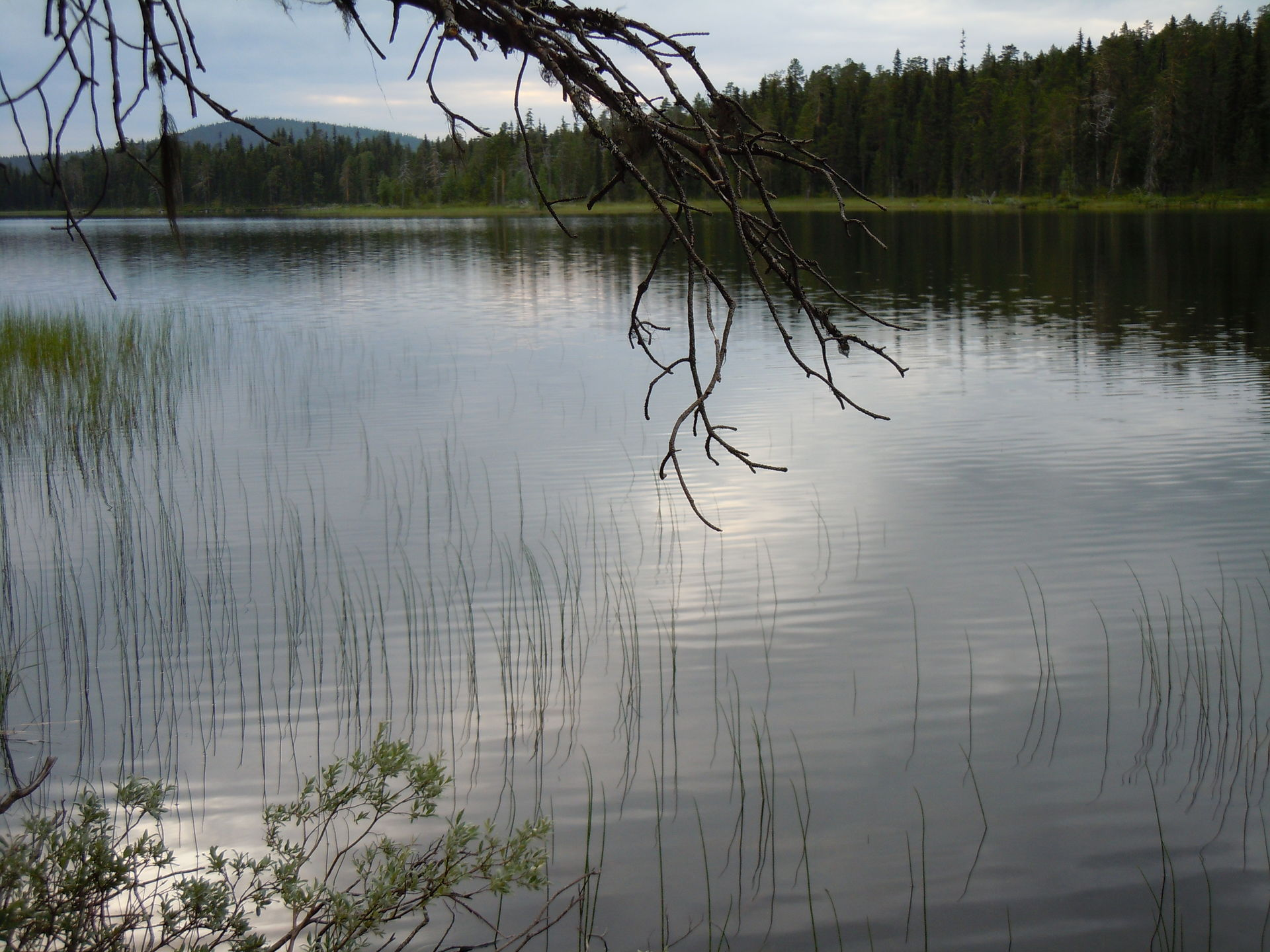Northern Reivo Lake in Lapland